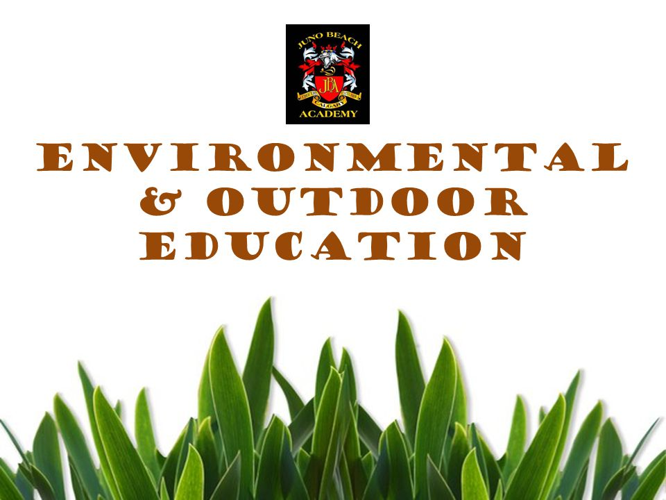 Environmental and Outdoor Education AIMS TO… improve ones understanding & Appreciation of the world around them