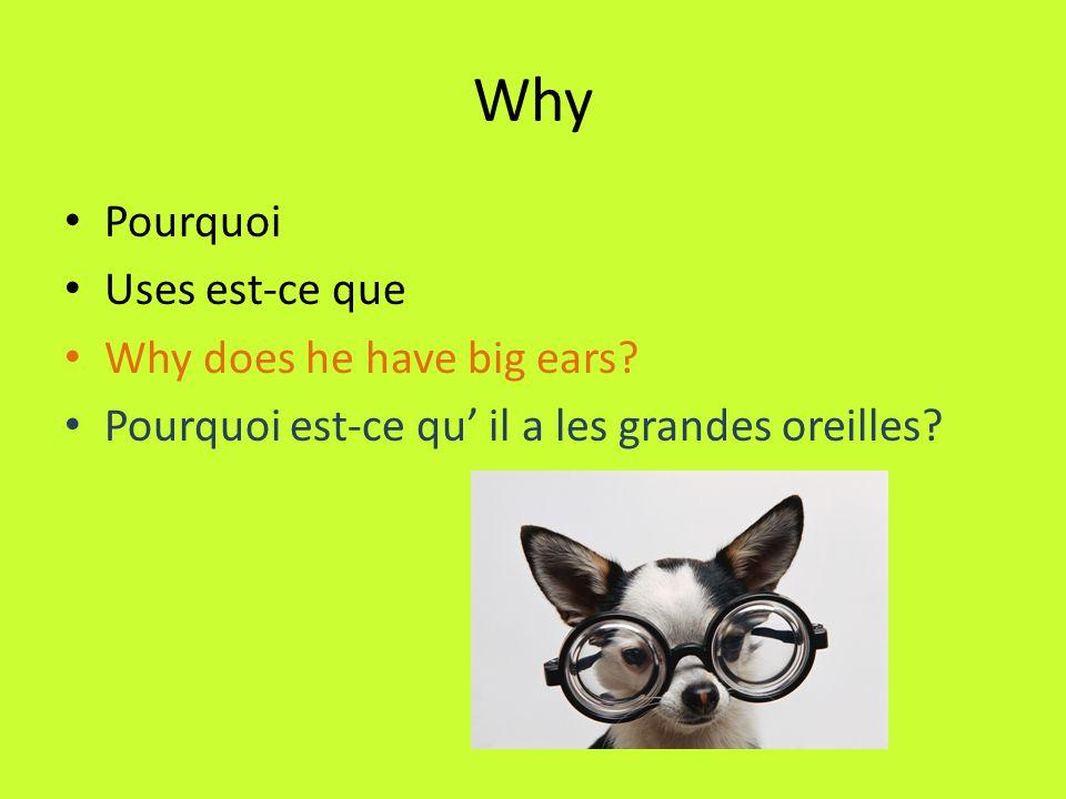 Where Où Takes est-ce que unless it is followed by a conjugation of être.