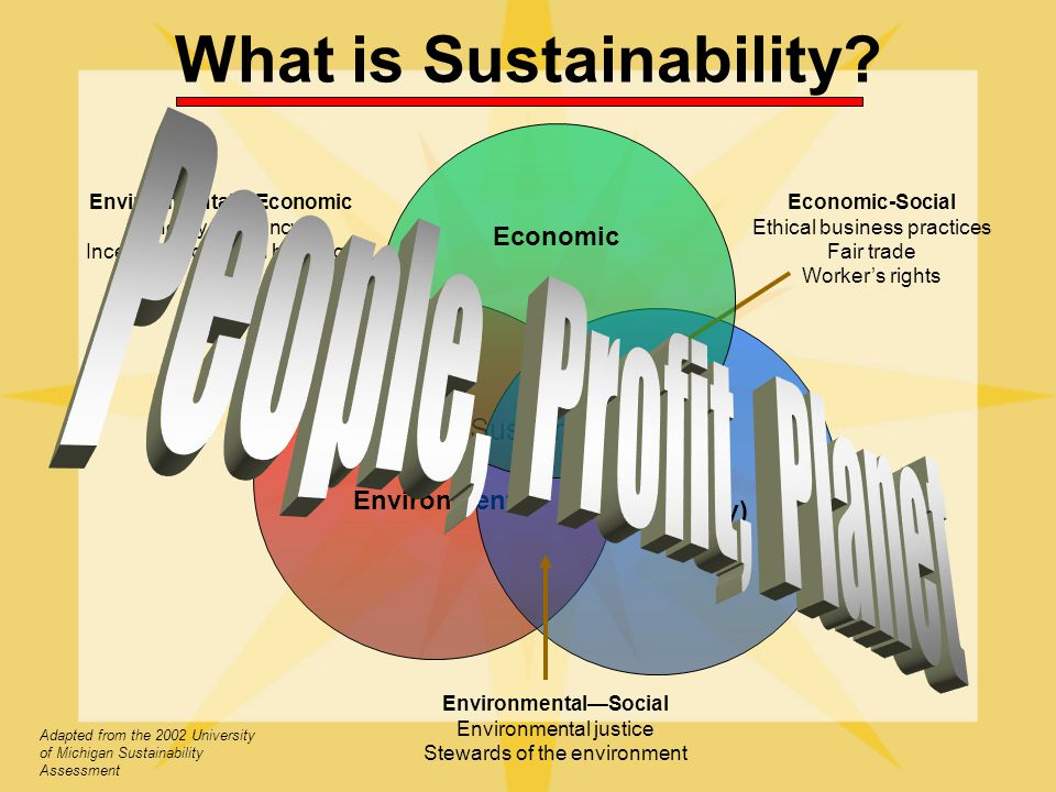 What is Sustainability Sustainability Environment Social (Equity) EnvironmentalEconomic Energy Efficiency Incentives for green buildings Economic-Social Ethical business practices Fair trade Workers rights EnvironmentalSocial Environmental justice Stewards of the environment Adapted from the 2002 University of Michigan Sustainability Assessment Economic