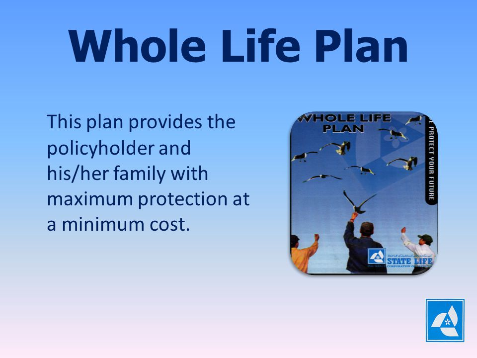 Child Protection Plan Father and Child, both are covered under this plan