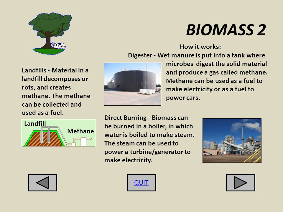 BIOMASS 2 QUIT Landfills - Material in a landfill decomposes or rots, and creates methane.