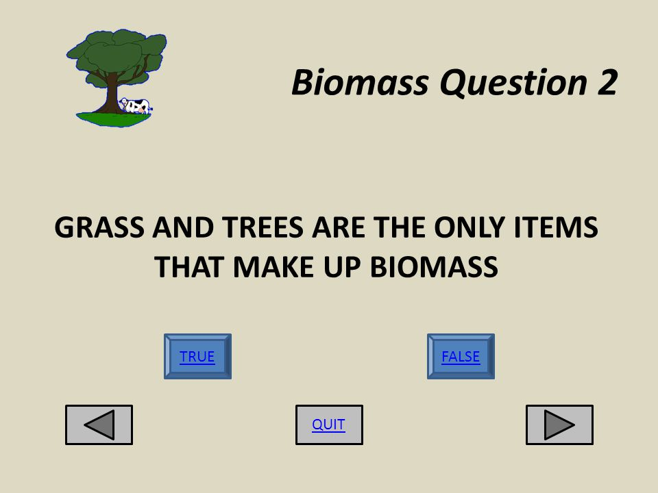 Biomass Question 2 GRASS AND TREES ARE THE ONLY ITEMS THAT MAKE UP BIOMASS QUIT TRUEFALSE
