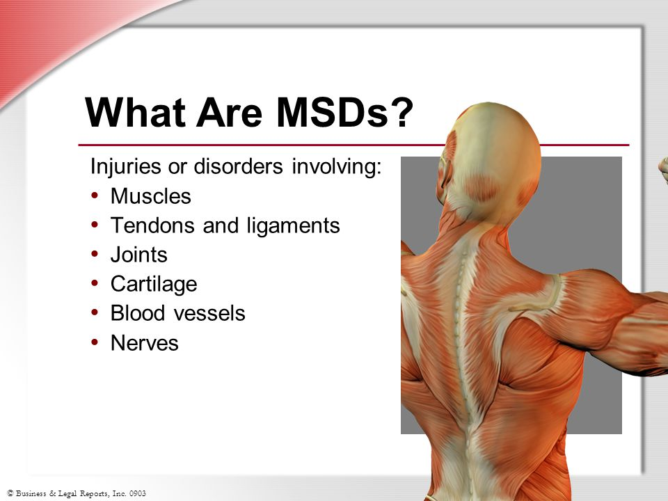© Business & Legal Reports, Inc. 0903 Injuries or disorders involving: Muscles Tendons and ligaments Joints Cartilage Blood vessels Nerves What Are MS