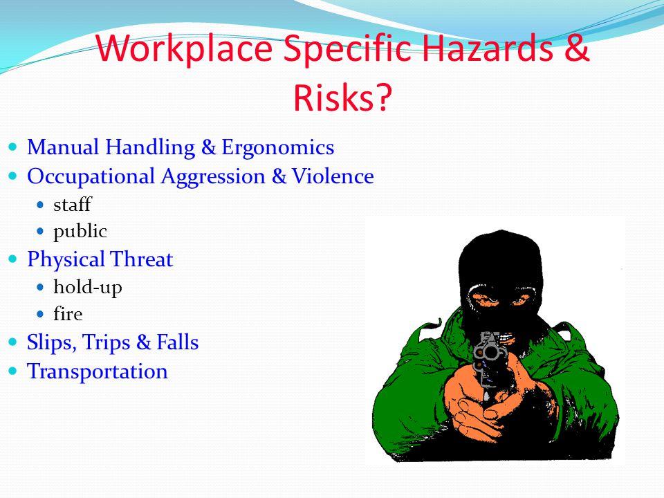 Types of Hazards Basic Hazard Categories Physical Chemical Ergonomic Psychological Radiation Biological Risk Assessment