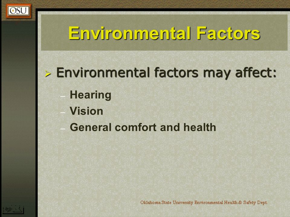 Environmental Factors Environmental factors may affect: Environmental factors may affect: – – Hearing – – Vision – – General comfort and health