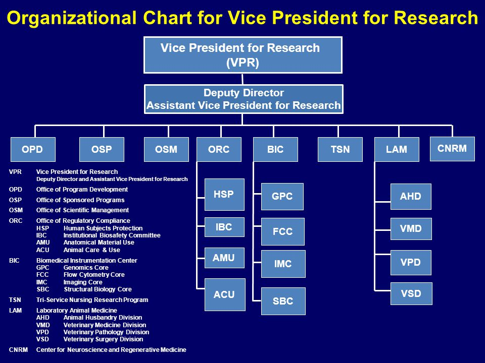 Organizational Chart for Vice President for Research VPRVice President for Research Deputy Director and Assistant Vice President for Research OPDOffice of Program Development OSPOffice of Sponsored Programs OSMOffice of Scientific Management ORCOffice of Regulatory Compliance HSP Human Subjects Protection IBCInstitutional Biosafety Committee AMUAnatomical Material Use ACUAnimal Care & Use BICBiomedical Instrumentation Center GPC Genomics Core FCC Flow Cytometry Core IMCImaging Core SBCStructural Biology Core TSN Tri-Service Nursing Research Program LAMLaboratory Animal Medicine AHDAnimal Husbandry Division VMDVeterinary Medicine Division VPD Veterinary Pathology Division VSDVeterinary Surgery Division CNRMCenter for Neuroscience and Regenerative Medicine Vice President for Research (VPR) Deputy Director Assistant Vice President for Research OSMOSPLAMTSNBIC HSP IBC AMU GPC FCC IMC VSD AHD VMD VPD ACU OPDORC CNRM SBC