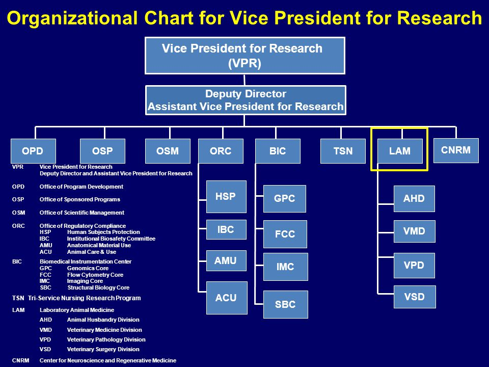 Organizational Chart for Vice President for Research VPRVice President for Research Deputy Director and Assistant Vice President for Research OPDOffic