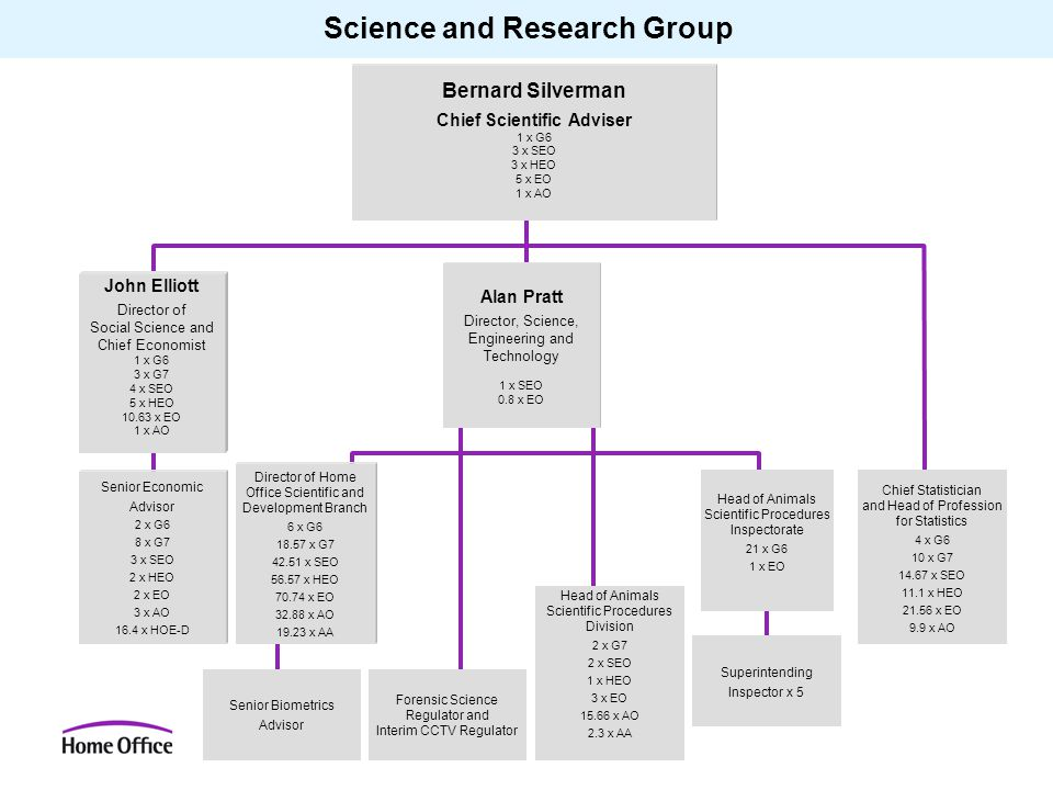 Science and Research Group Bernard Silverman Chief Scientific Adviser 1 x G6 3 x SEO 3 x HEO 5 x EO 1 x AO John Elliott Director of Social Science and