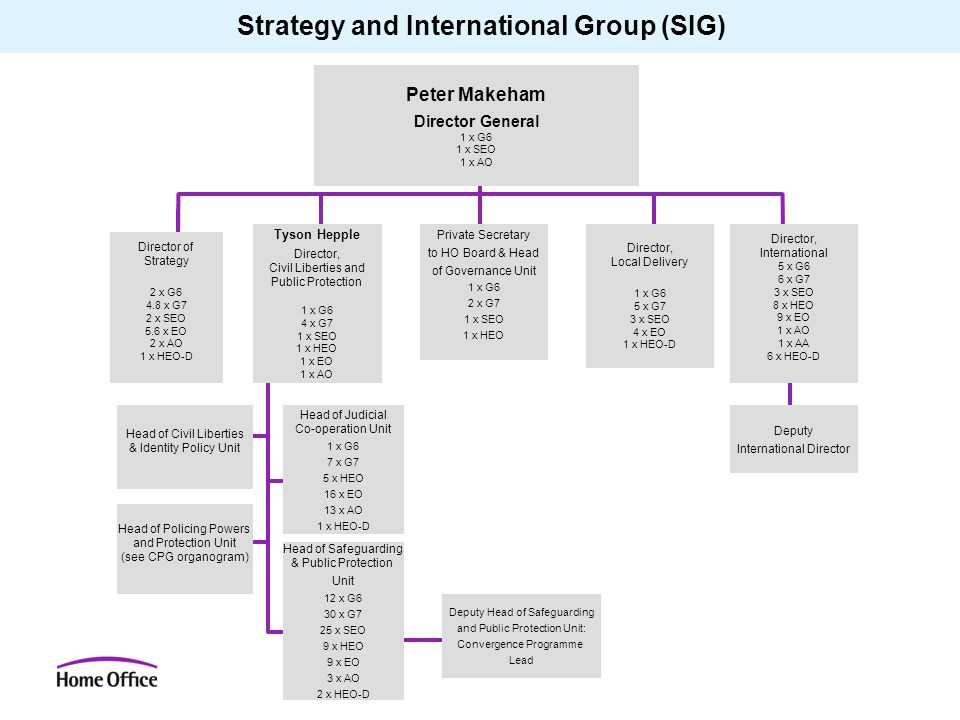 Strategy and International Group (SIG) Peter Makeham Director General 1 x G6 1 x SEO 1 x AO Director of Strategy 2 x G6 4.8 x G7 2 x SEO 5.6 x EO 2 x