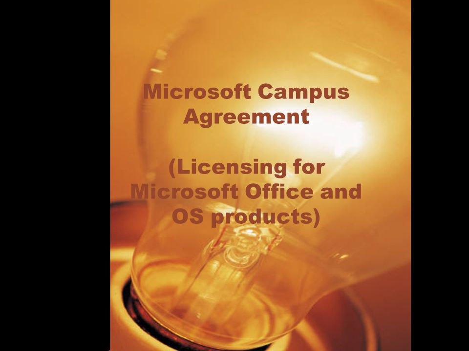 Microsoft Campus Agreement (Licensing for Microsoft Office and OS products)