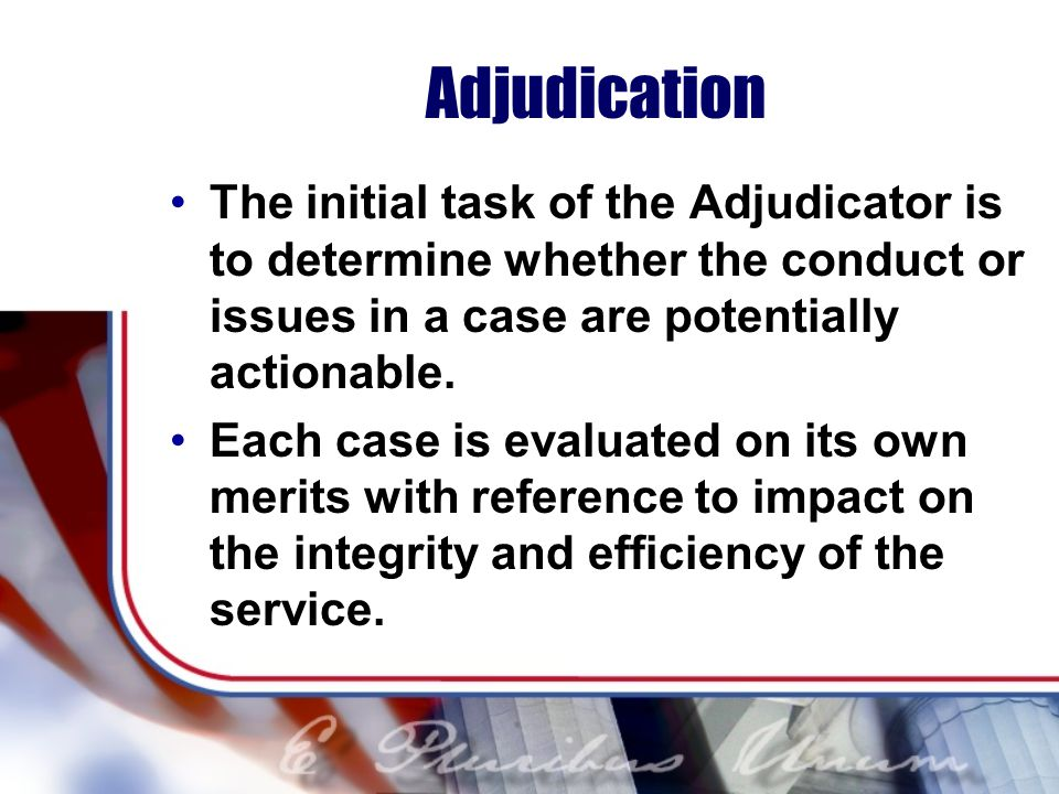 Adjudication The initial task of the Adjudicator is to determine whether the conduct or issues in a case are potentially actionable.