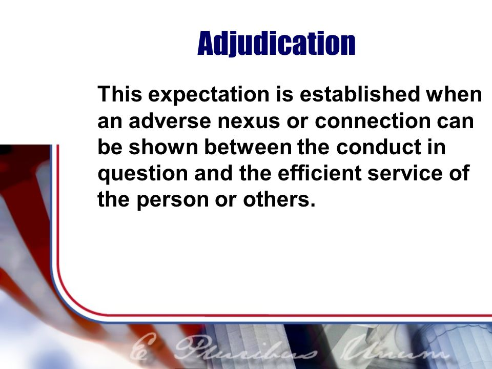 Adjudication This expectation is established when an adverse nexus or connection can be shown between the conduct in question and the efficient service of the person or others.