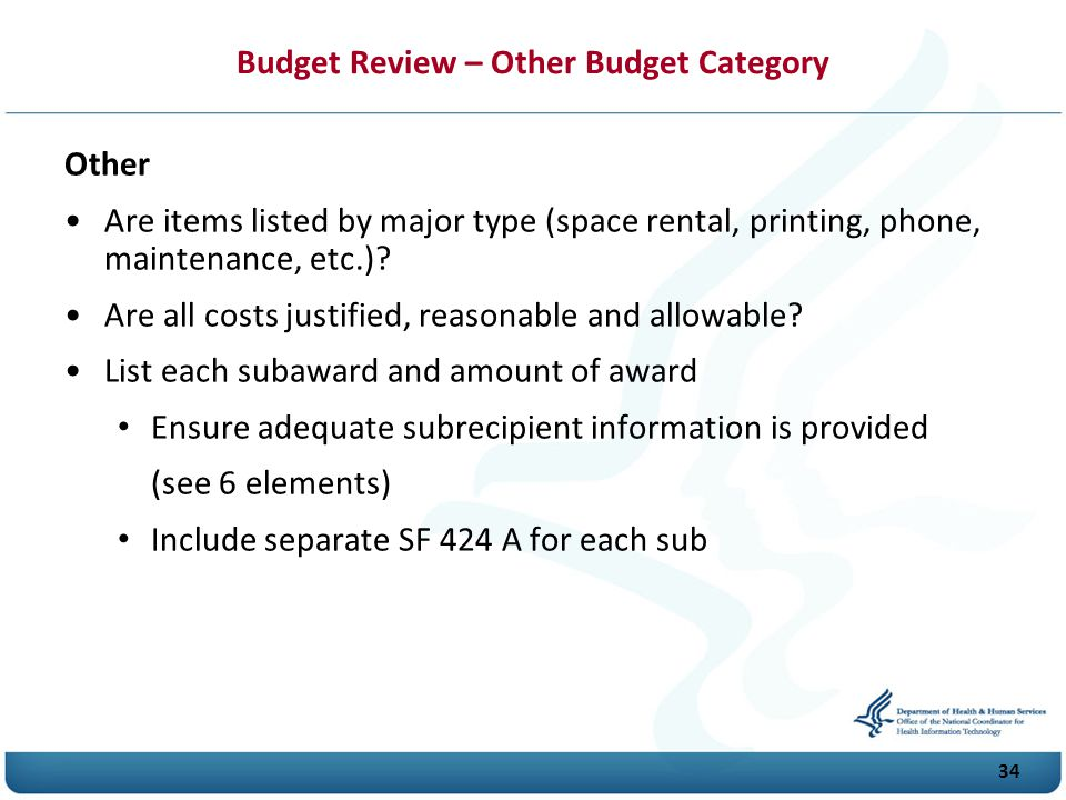 Budget Review – Other Budget Category Other Are items listed by major type (space rental, printing, phone, maintenance, etc.).