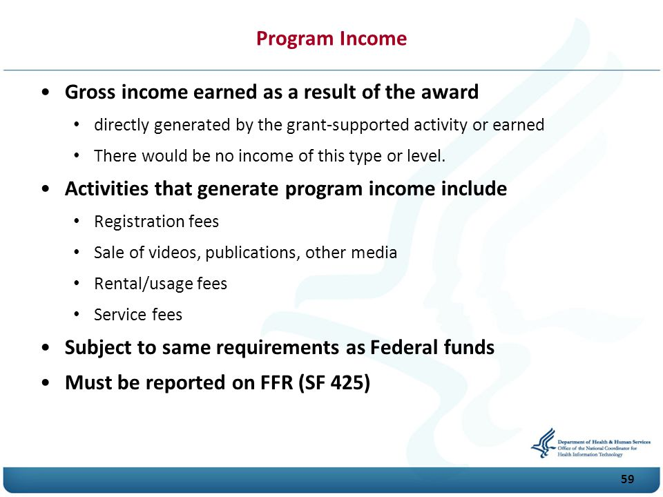 Program Income Gross income earned as a result of the award directly generated by the grant-supported activity or earned There would be no income of this type or level.