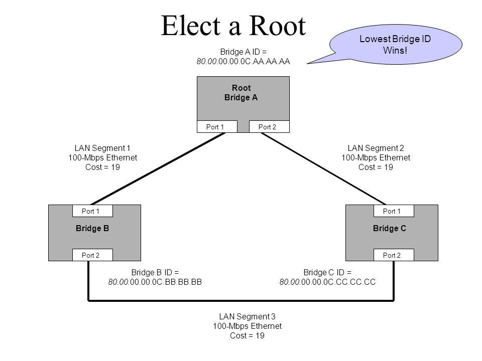 Elect a Root Bridge BBridge C Bridge A ID = 80.00.00.00.0C.AA.AA.AA Bridge B ID = 80.00.00.00.0C.BB.BB.BB Bridge C ID = 80.00.00.00.0C.CC.CC.CC Port 1 Port 2 Port 1 Port 2 Port 1Port 2 LAN Segment 2 100-Mbps Ethernet Cost = 19 LAN Segment 1 100-Mbps Ethernet Cost = 19 LAN Segment 3 100-Mbps Ethernet Cost = 19 Root Bridge A Lowest Bridge ID Wins!