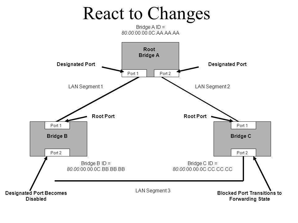 React to Changes Bridge BBridge C Root Bridge A Bridge A ID = 80.00.00.00.0C.AA.AA.AA Bridge B ID = 80.00.00.00.0C.BB.BB.BB Bridge C ID = 80.00.00.00.0C.CC.CC.CC Port 1 Port 2 Port 1 Port 2 Port 1Port 2 LAN Segment 2LAN Segment 1 LAN Segment 3 Root Port Designated Port Designated Port Becomes Disabled Blocked Port Transitions to Forwarding State