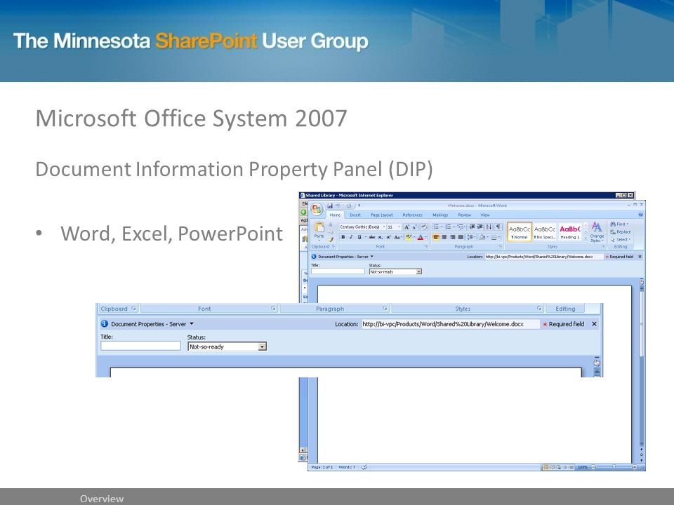 Microsoft Office System 2007 Document Information Property Panel (DIP) Word, Excel, PowerPoint Overview