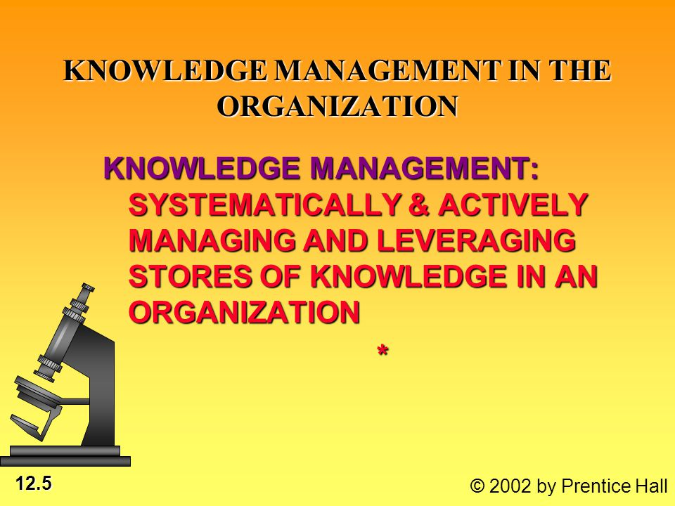 12.5 © 2002 by Prentice Hall KNOWLEDGE MANAGEMENT IN THE ORGANIZATION KNOWLEDGE MANAGEMENT: SYSTEMATICALLY & ACTIVELY MANAGING AND LEVERAGING STORES O