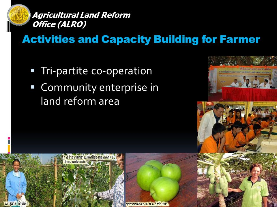 Activities and Capacity Building for Farmer Tri-partite co-operation Community enterprise in land reform area Agricultural Land Reform Office (ALRO)
