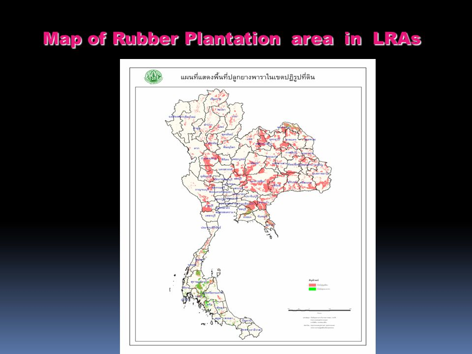 Map of Rubber Plantation area in LRAs Map of Rubber Plantation area in LRAs