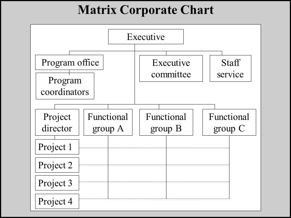 Executive Program coordinators Matrix Corporate Chart Program office Executive committee Staff service Project 1 Project 2 Project 3 Project 4 Project