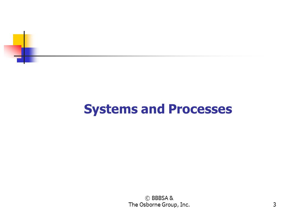 © BBBSA & The Osborne Group, Inc.3 Systems and Processes
