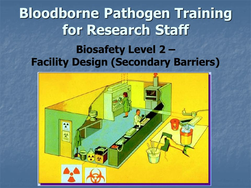 Bloodborne Pathogen Training for Research Staff Biosafety Level 2 – Facility Design (Secondary Barriers)