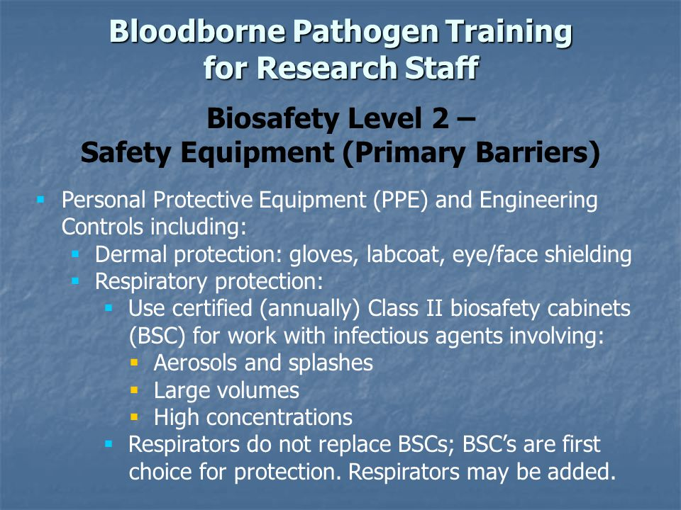 Biosafety Level 2 – Safety Equipment (Primary Barriers) Bloodborne Pathogen Training for Research Staff Personal Protective Equipment (PPE) and Engineering Controls including: Dermal protection: gloves, labcoat, eye/face shielding Respiratory protection: Use certified (annually) Class II biosafety cabinets (BSC) for work with infectious agents involving: Aerosols and splashes Large volumes High concentrations Respirators do not replace BSCs; BSCs are first choice for protection.