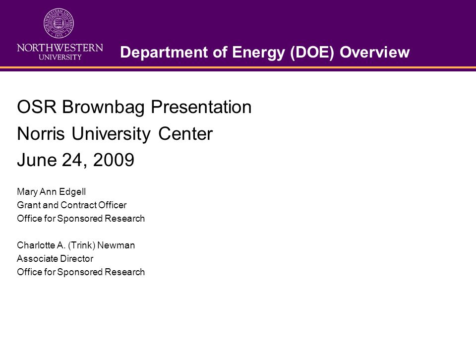 AGENDA I.DOE Overview II. DOE Awards to Northwestern FY 2008 III.