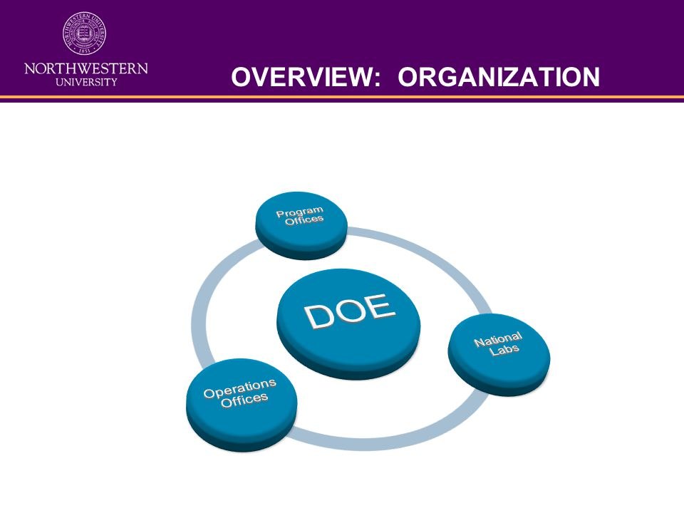 OVERVIEW: ORGANIZATION