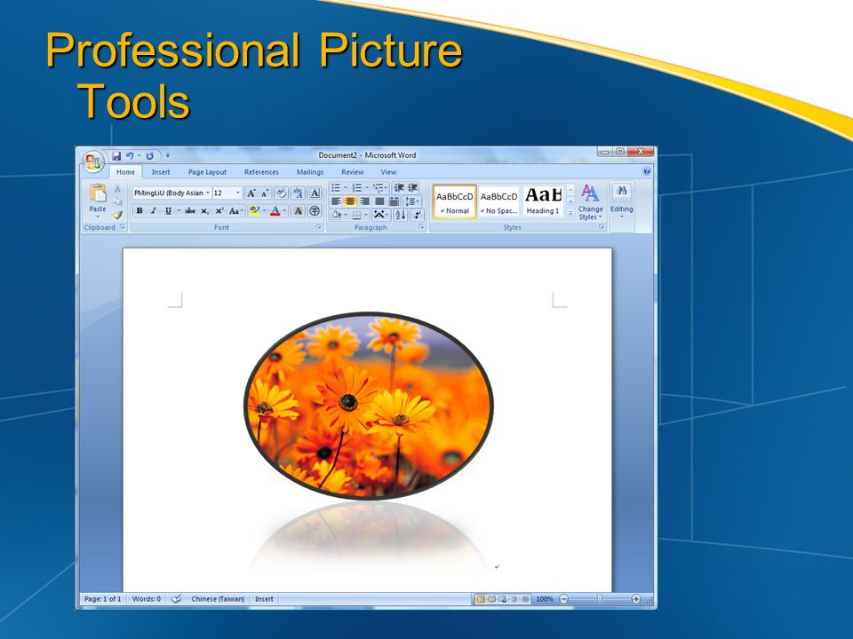 Professional Picture Tools