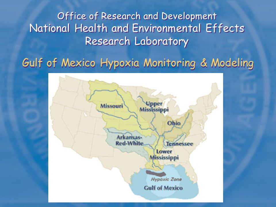 Water Quality Issues in the Gulf of Mexico Reduce coastal nutrient loads Reduce hypoxia in northern Gulf Improve water quality Restore wetlands Preserve habitats Sources:Gulf Alliance, draft report NCCR2, 2005 Hypoxia Action Plan, 2001