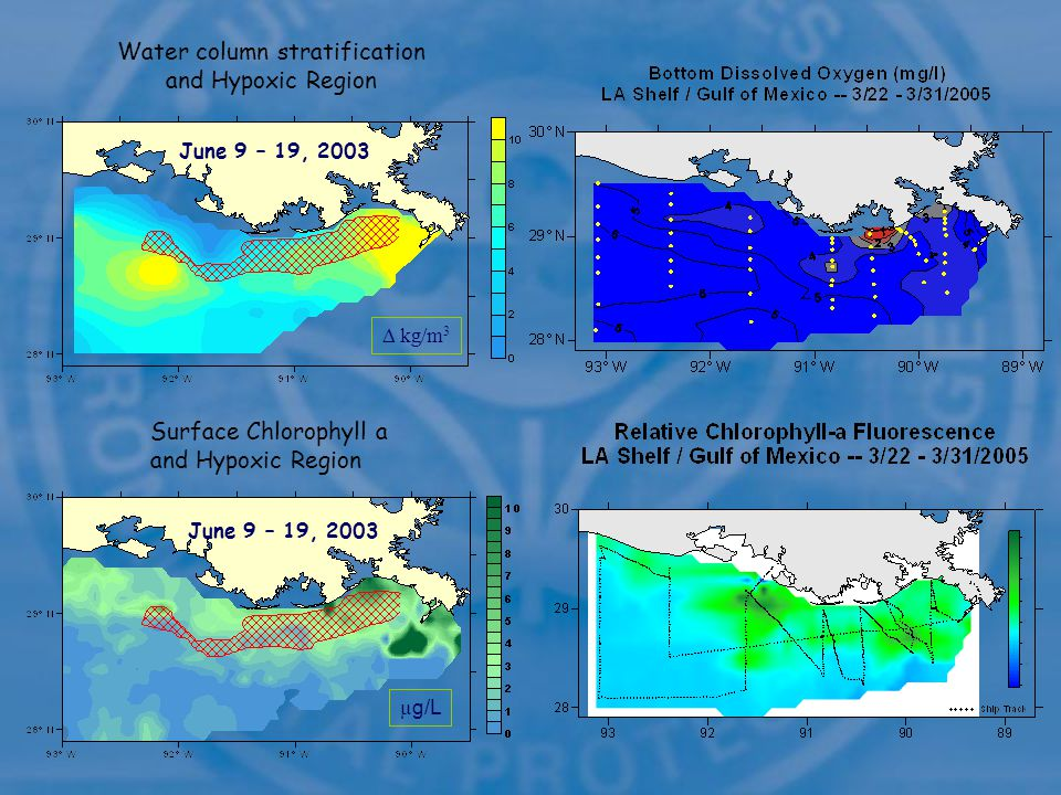 kg/m 3 June 9 – 19, 2003 Water column stratification and Hypoxic Region µ g/L June 9 – 19, 2003 Surface Chlorophyll a and Hypoxic Region