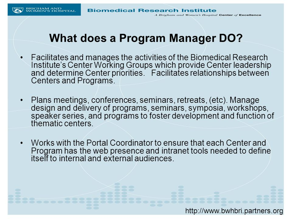 What does a Program Manager DO.