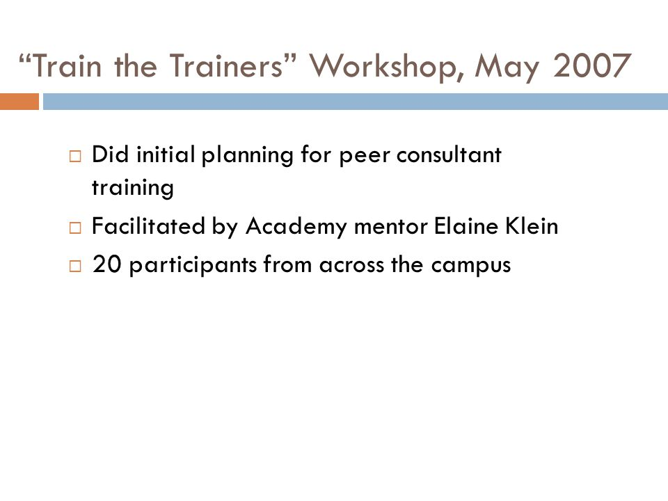 Train the Trainers Workshop, May 2007 Did initial planning for peer consultant training Facilitated by Academy mentor Elaine Klein 20 participants fro