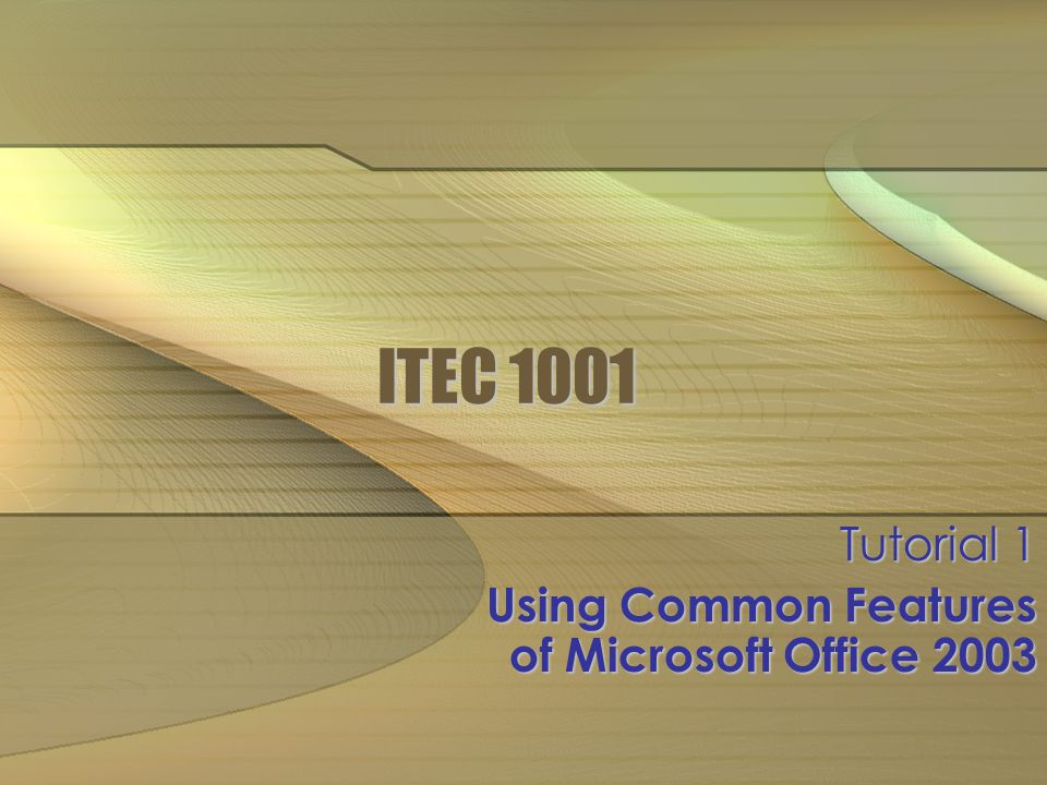 ITEC 1001 Tutorial 1 Using Common Features of Microsoft Office 2003
