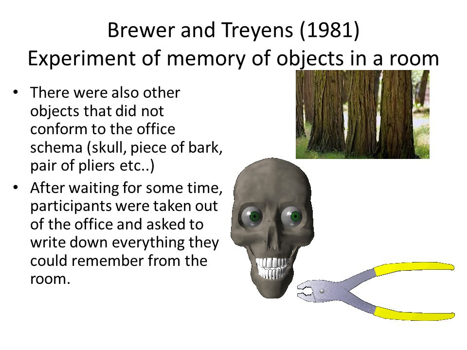 Brewer and Treyens (1981) Experiment of memory of objects in a room There were also other objects that did not conform to the office schema (skull, pi