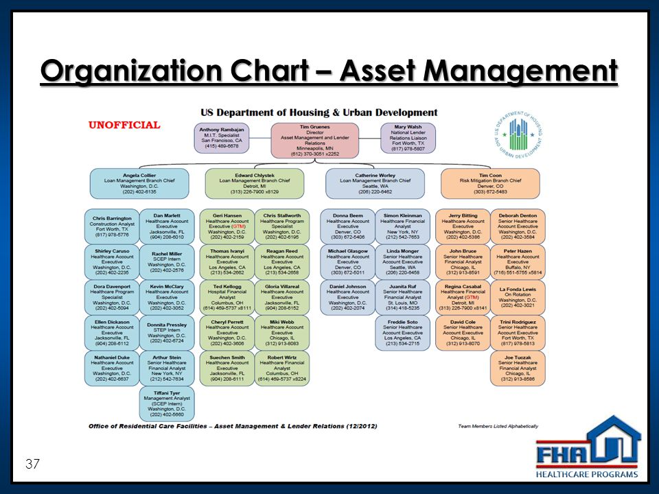 37 Organization Chart – Asset Management