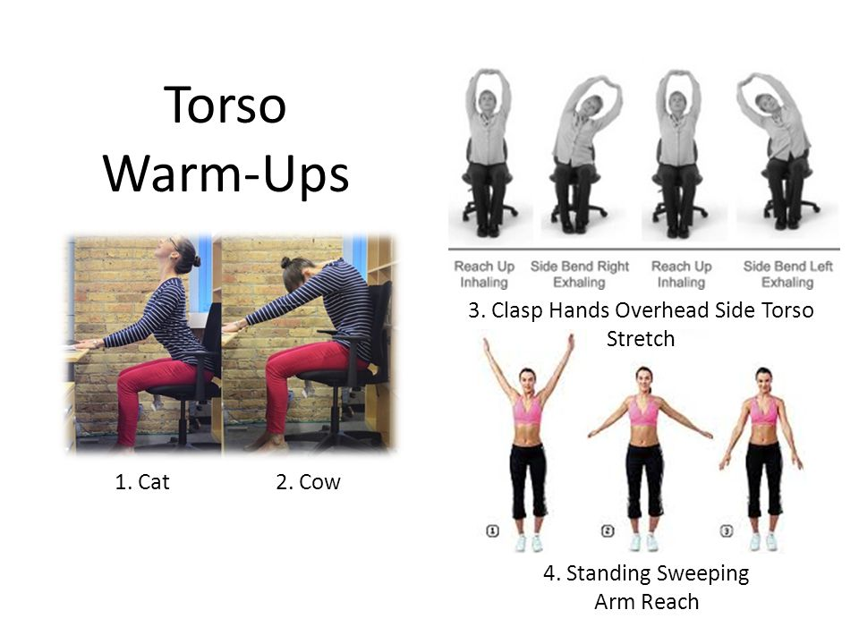 Torso Warm-Ups 1. Cat 2. Cow 3. Clasp Hands Overhead Side Torso Stretch 4. Standing Sweeping Arm Reach