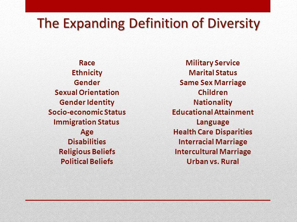 Race Ethnicity Gender Sexual Orientation Gender Identity Socio-economic Status Immigration Status Age Disabilities Religious Beliefs Political Beliefs