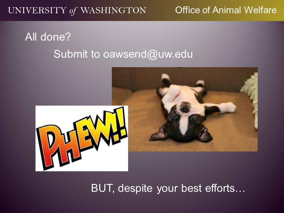 All done Submit to oawsend@uw.edu BUT, despite your best efforts…
