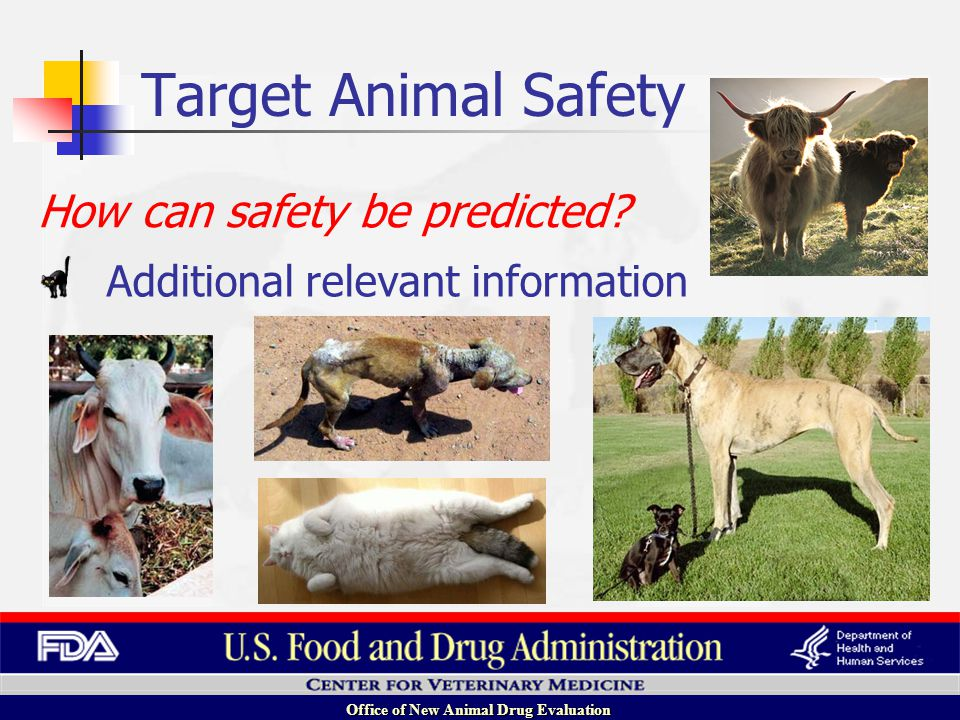 Office of New Animal Drug Evaluation Additional relevant information How can safety be predicted.