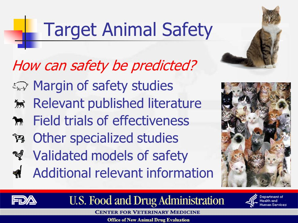 Office of New Animal Drug Evaluation Margin of safety studies Relevant published literature Field trials of effectiveness Other specialized studies Validated models of safety Additional relevant information How can safety be predicted.