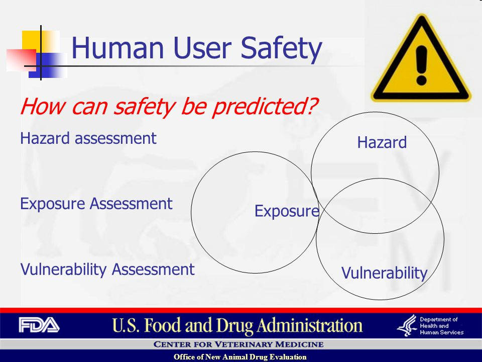 Office of New Animal Drug Evaluation Hazard Exposure Vulnerability Vulnerability Assessment Exposure Assessment Hazard assessment How can safety be predicted.