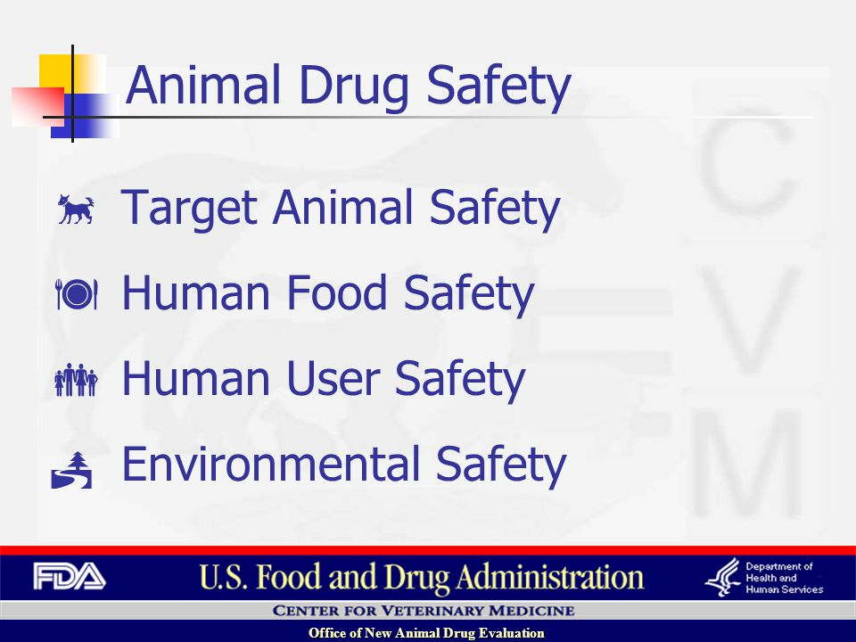 Office of New Animal Drug Evaluation Target Animal Safety Human Food Safety Human User Safety Environmental Safety Animal Drug Safety