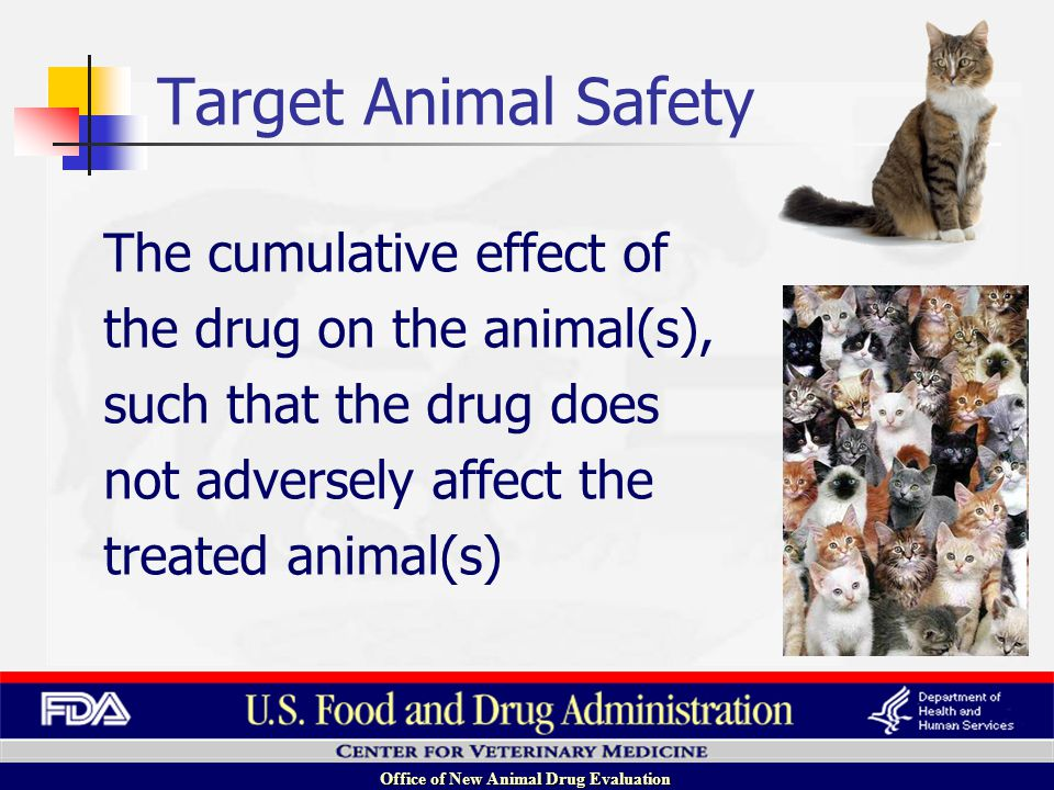 Office of New Animal Drug Evaluation Animal Drug Safety Target Animal Safety Human Food Safety Human User Safety Environmental Safety