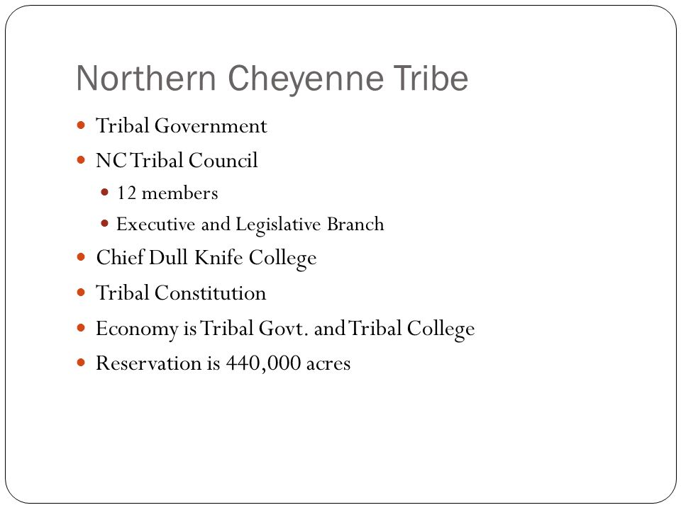 Tribal Government NC Tribal Council 12 members Executive and Legislative Branch Chief Dull Knife College Tribal Constitution Economy is Tribal Govt.