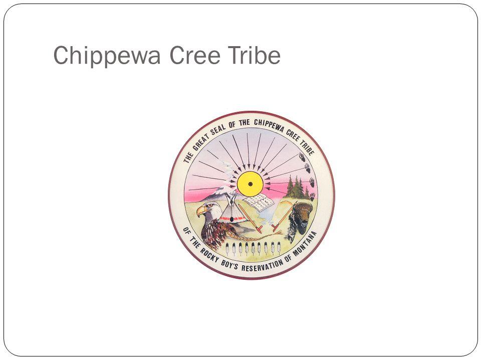 Chippewa Cree Tribe