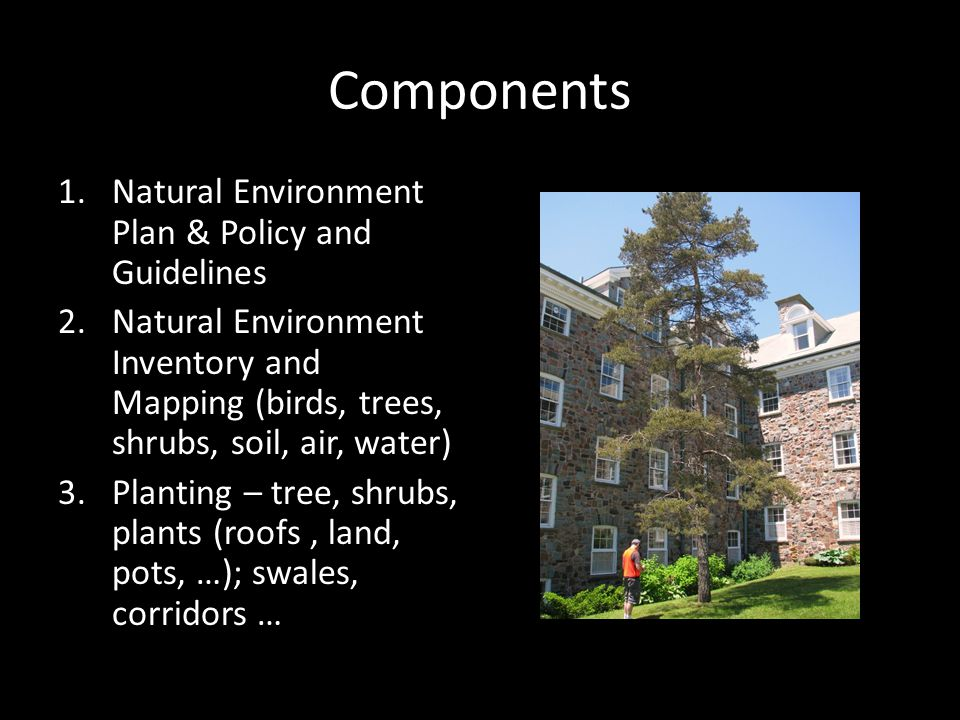 Components 1.Natural Environment Plan & Policy and Guidelines 2.Natural Environment Inventory and Mapping (birds, trees, shrubs, soil, air, water) 3.Planting – tree, shrubs, plants (roofs, land, pots, …); swales, corridors …