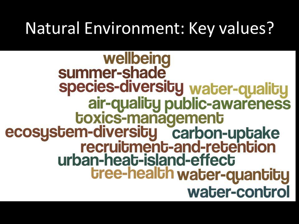 Natural Environment: Key values